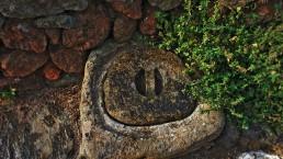 Dammuso - Pantelleria - Il silenzio del bosco - Coste Ghirlanda