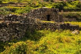 Coste Ghirlanda - Tenuta di Montagnole - Pantelleria