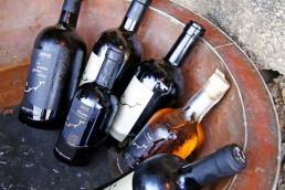 Wine Shop - Coste Ghirlanda - Pantelleria